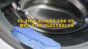 vệ sinh gioăng cao su máy giặt electrolux