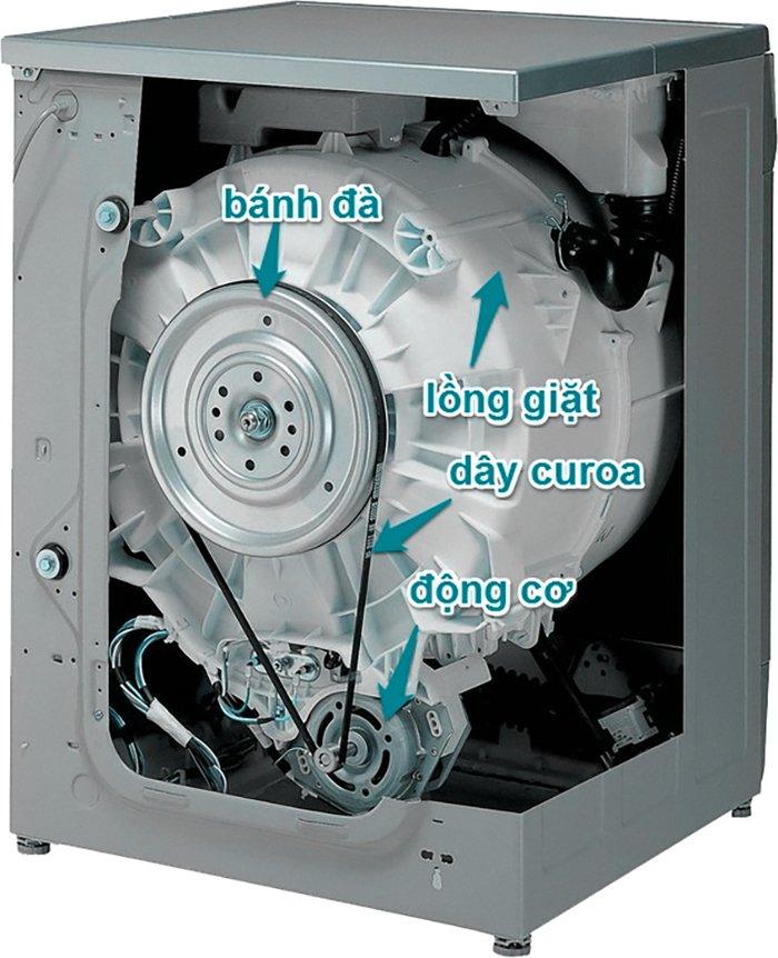 vị trí của day curoa trong máy giặt